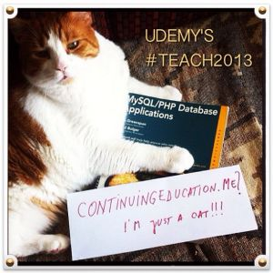 Our Tom Cat Udemy Mascot invites you to #Teach2013 !