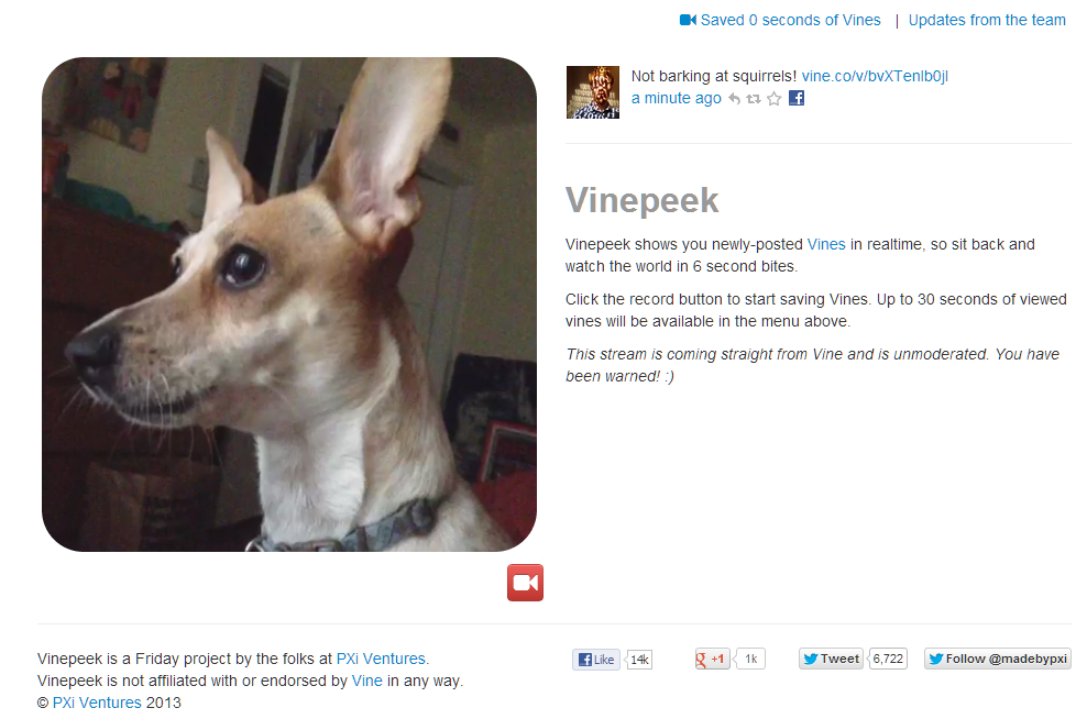 vinepeek-watch-realtime-vine-videos