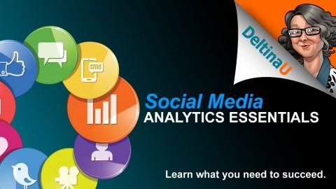 Udemy - Social Media Analytics Essentials - Deltina Hay