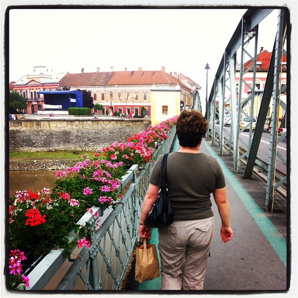 Downtown Lugoj, over the Timis bridge