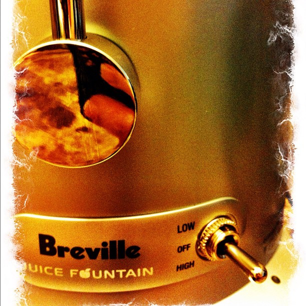 Breville Fountain Plus Close-Up