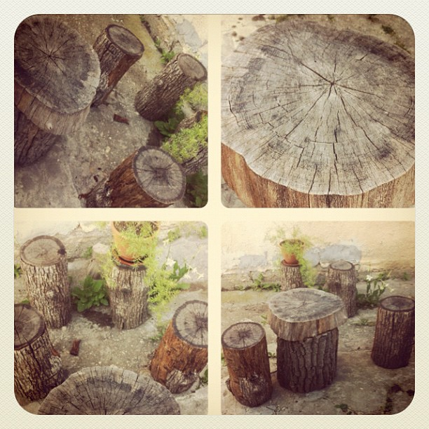 Stump theme