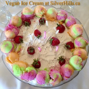 Vegan-Ice-Cream-at-SilverHills.ca-intercer-health-fruits-veggie-veggies-canada-silverhills-britishco