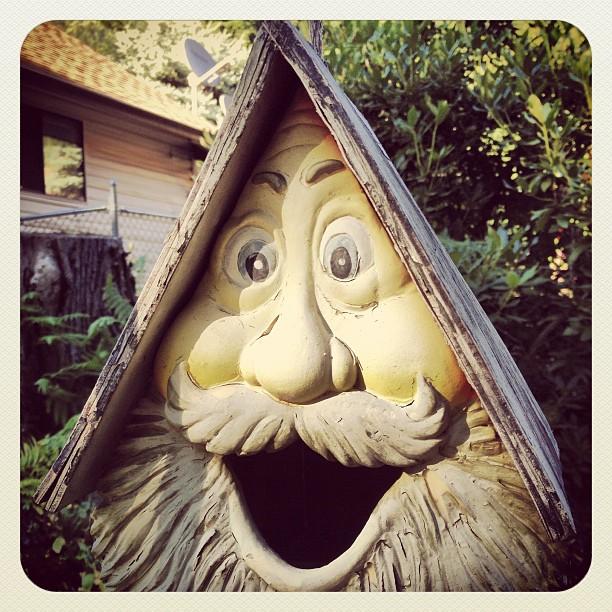 Funny bird tree house at Camp Hope, BC