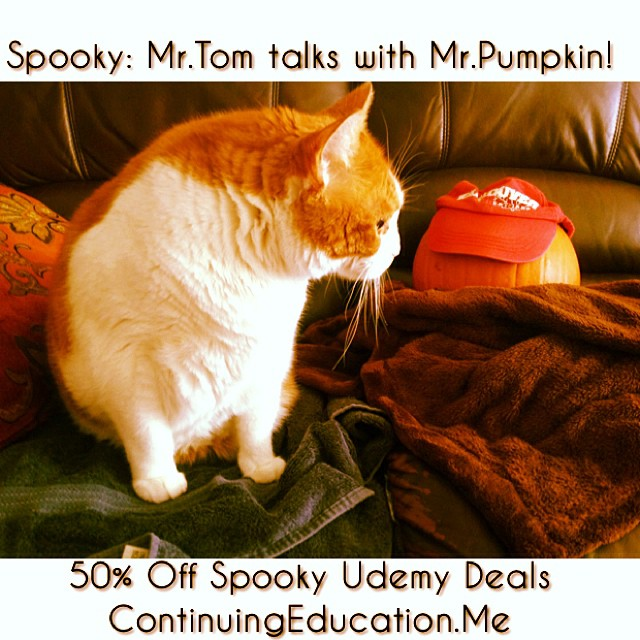 Spooky: Mr.Tom talks with Mr.Pumpkin! 50% Off Spooky Udemy Deals petsofinstagram