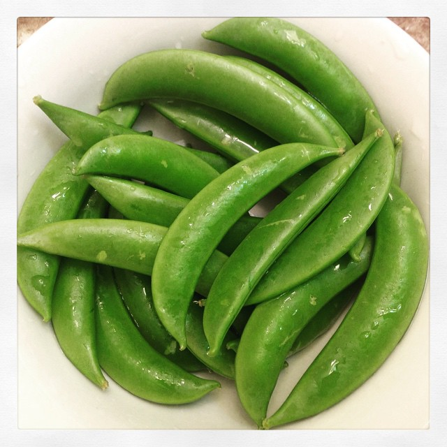 Snap pea spirale
