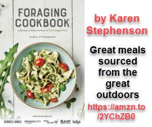 Foraging Cookbook by Karen Stephenson